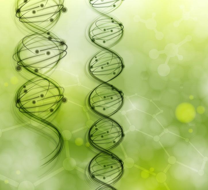 Molécules d'ADN