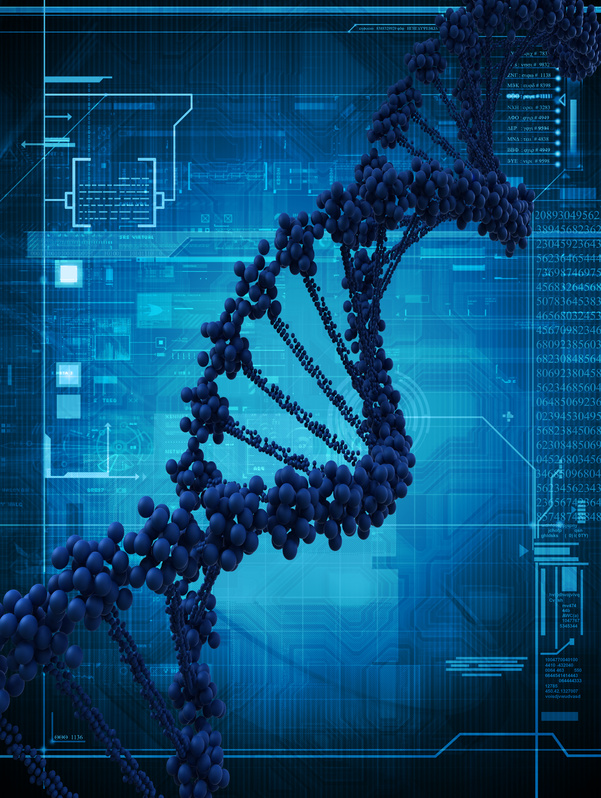 ADN et bioinformatique